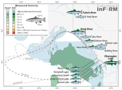 inform-salmon-2015-river_nov-15-2016