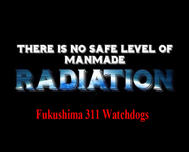 Fukushima 311 Watchdogs
