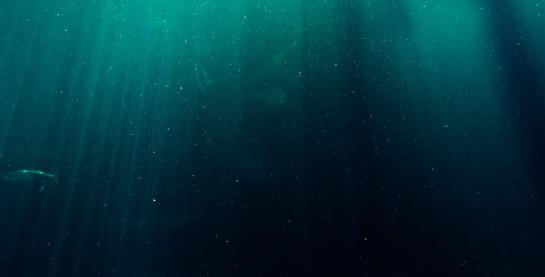 fuku-ocean-test-slider-pexels